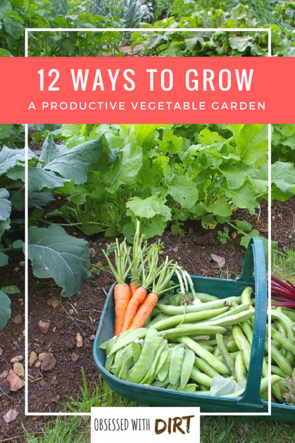 Designing the perfect vegetable garden layout isn't easy. There are so many things to consider! Your vegetables will need a lot of sun, water, nutrients and loving care to grow. That's why we've created the ultimate list of the best 12 vegetable garden layouts and plans to help you grow a super productive vegetable garden. #thehappygardeninglife #homegarden #growyourownfood #epicgardening